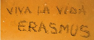 erasmus_jaune